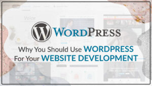 Why You Should Use WordPress for Your Website Development?